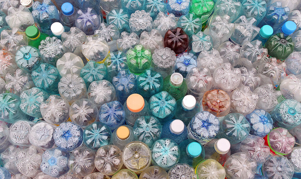 Pictures of used plastic bottles